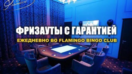 Ежедневные фризауты во «Flamingo»